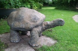 Giant Turtle Outdoor Sculpture – Sold