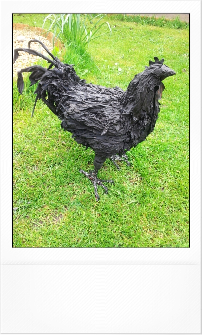 Ayam cemani rare breed chicken sculpture sold yvette cobley ayam cemani is a rare breed of all black chicken from indonesia which often sell for thousands of poundseir plumage meat internal organs and bones ccuart Images